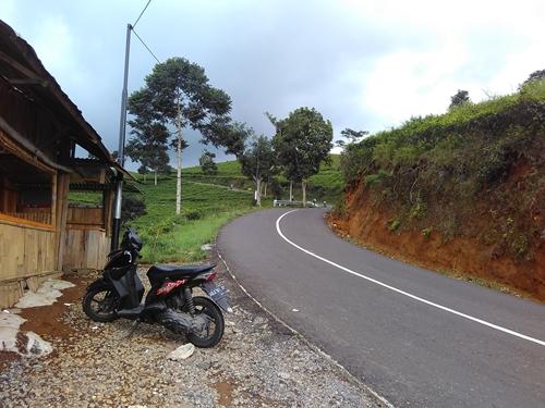 jalan yang harus di lalui untuk sampai ke kebun teh Kemuning