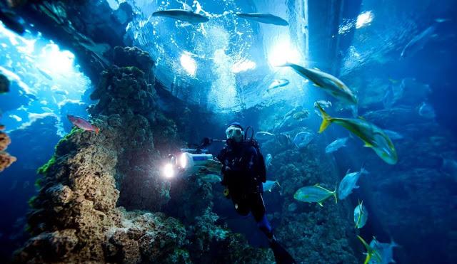 Museu Oceanográfico em Mônaco