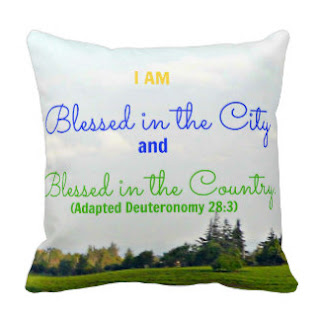 I am blessed in the city and blessed in the country. (Adapted Deuteronomy 29:3) throw pillow