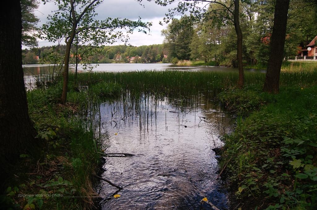 Miodówko, jezioro w centrum wsi