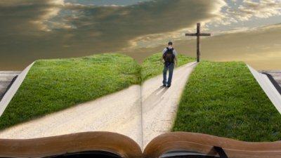 Resultado de imagem para Extraordinária missão dos Fiéis Mensageiros de Deus