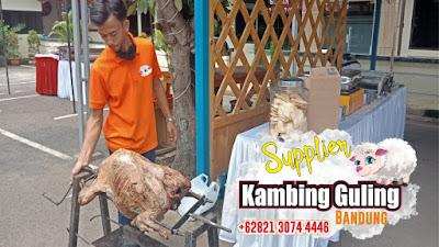 Spesialis Kambing Guling Ciwidey Bandung, Spesialis Kambing Guling Ciwidey, Spesialis Kambing Guling Bandung, Kambing Guling Ciwidey Bandung, Kambing Guling Bandung, Kambing Guling Ciwidey, Kambing Guling,
