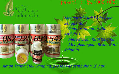 Obat Kutil Kelamin Herbal Magic