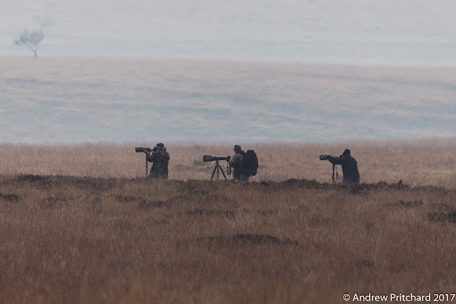 Three photographers out on the moor stalking stags.