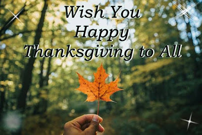 Wish you happy thanksgiving to you written on maple leaf with forest background image.