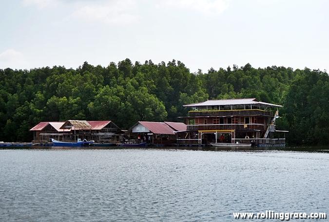 Bakau Hijau Sungai Merbok, Kedah