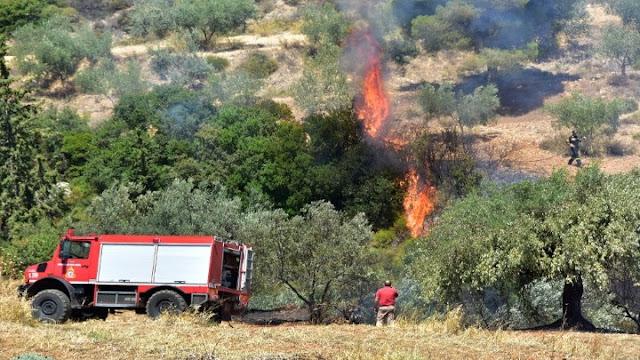 Άμεση κινητοποίηση της πυροσβεστικής για πυρκαγιά στην Αρχαία Νεμέα