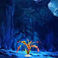 BigEscapeGames-Rescue Tar…