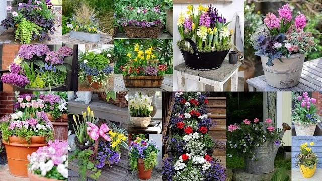 Ιδέες για να συνδυάσετε Ανοιξιάτικα λουλούδια στην ίδια γλάστρα