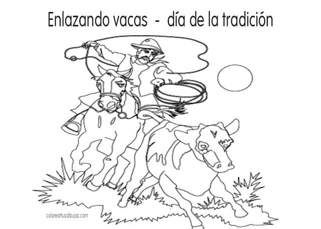 Enlazando vacas  -  día de la tradición