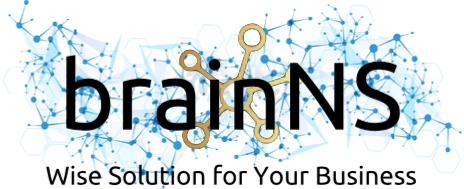 Brain Network Solutions