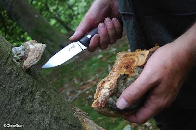 machris-evo.bushcraf-tknife