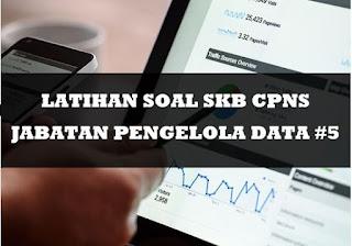 Latihan Soal SKB CPNS Jabatan Pengelola Data 5