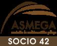 Socio 42