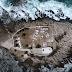 Το πιο «creepy» νησάκι της Ελλάδας (video)