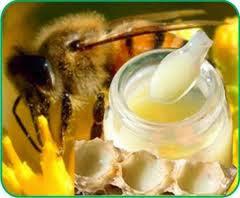 Sữa ong chúa nguyên chất mua ở đâu Hà Nội