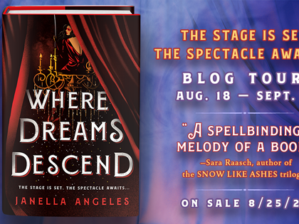 Where Dreams Descend Blog Tour