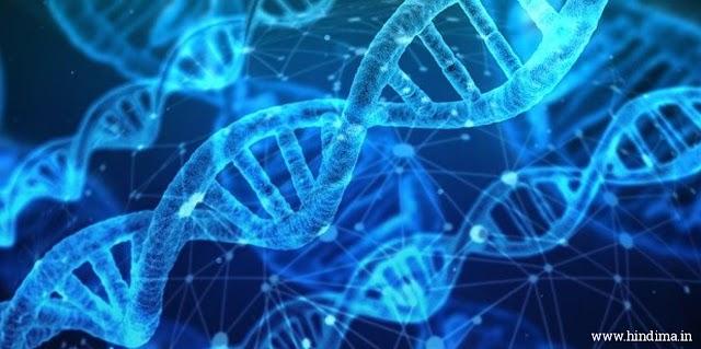 DNA Full Form in Hindi | DNA के कार्य?