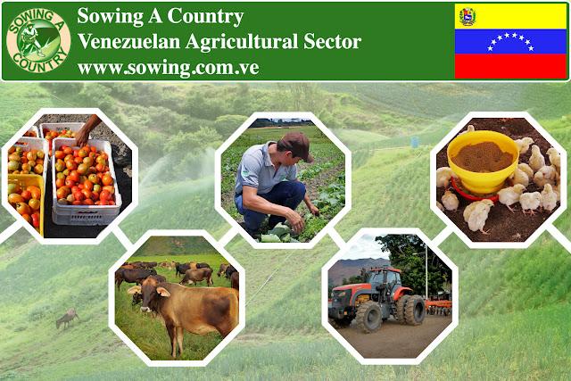 Venezuelan Agricultural Sector