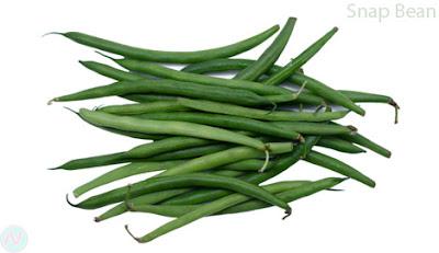 Snap bean