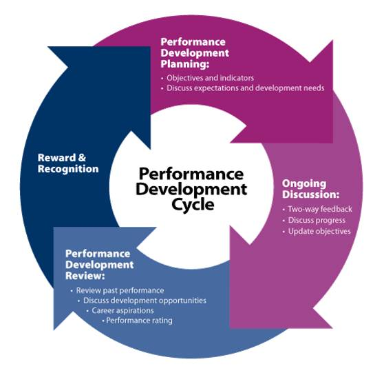 essay on pay plan for a effective performance management system  essay on pay plan for a effective performance management system finally  under the help of