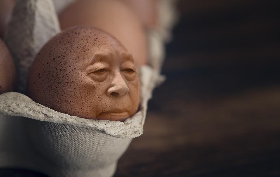 你家的雞蛋可以吃嗎?快到這個網站查詢是否有芬普尼 iman-1459322_960_720