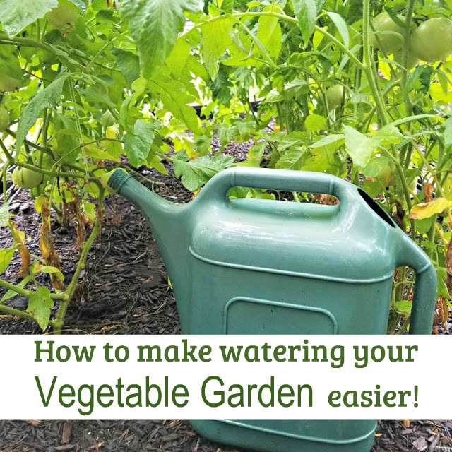How much water does your garden need? Learn this and more with these 8 tips to make watering your garden easier.