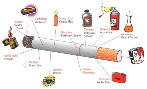 لتدخين نشأه التدخين وتركيب السيجارة