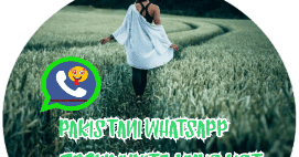 pakistani whatsapp group invite links list 160 - Whatsapp Group Invite