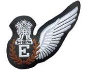 IAF Flight Engineers Badge