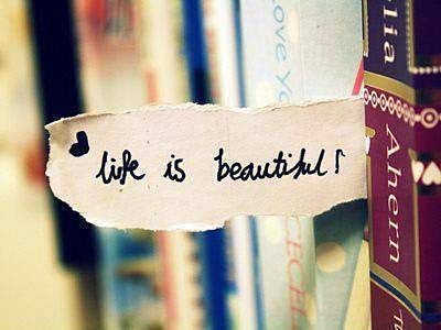 Book treatment - life is beautiful