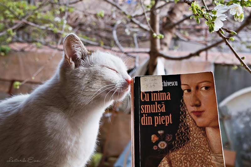 carte Radu Paraschivescu pisică