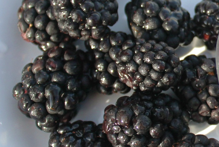 these are berries crushed into making a blackberry wine soup