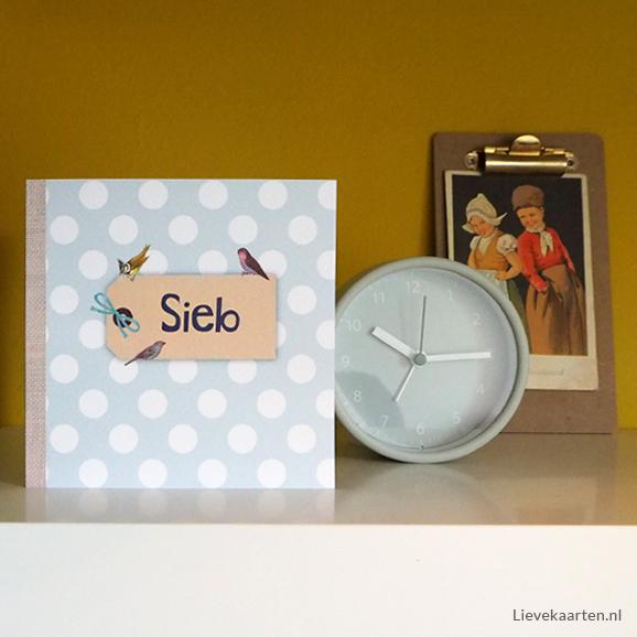 https://lievekaarten.nl/geboortekaartjes/hip/stippen/lief-geboortekaartje-ries