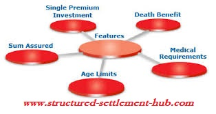 Insurance Policy Types & Benefits