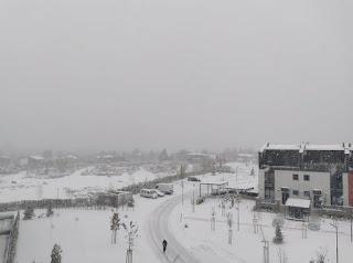 Първи сняг от много време ...