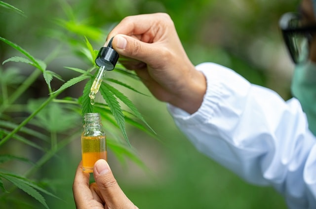 how to choose best full spectrum cbd oil top cannabidiol