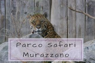 Visitare il Parco Safari Murazzano
