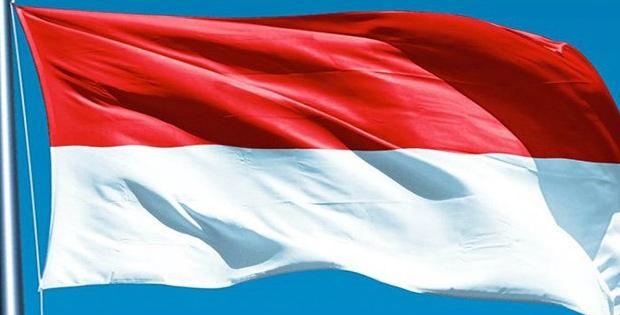 Pengakuan Kedaulatan Indonesia