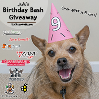 Jada's 9th Birthday Bash Giveaway