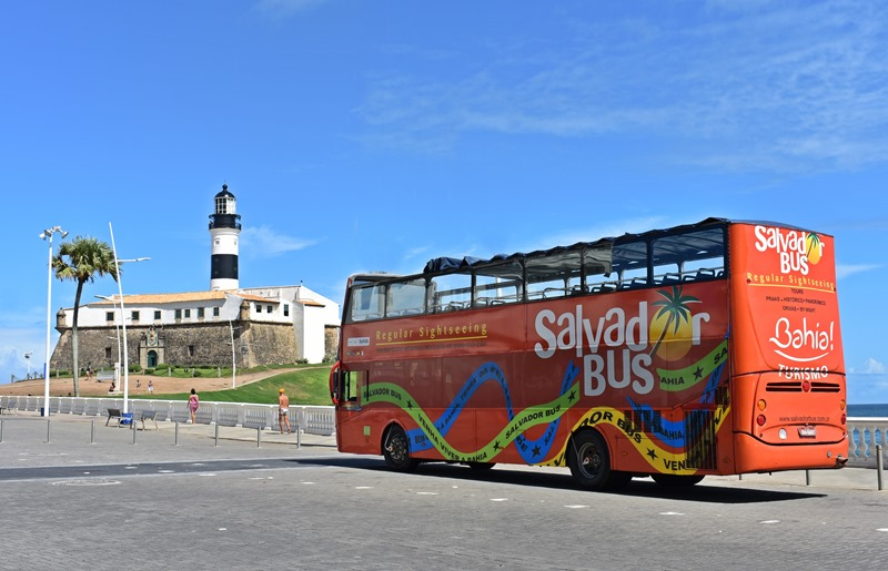 Salvador Bus, informações e valores
