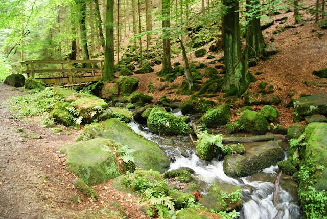 Im kühlen Tal fließt der Silberbach. Wie hier führen ab und an Brücken darüber.