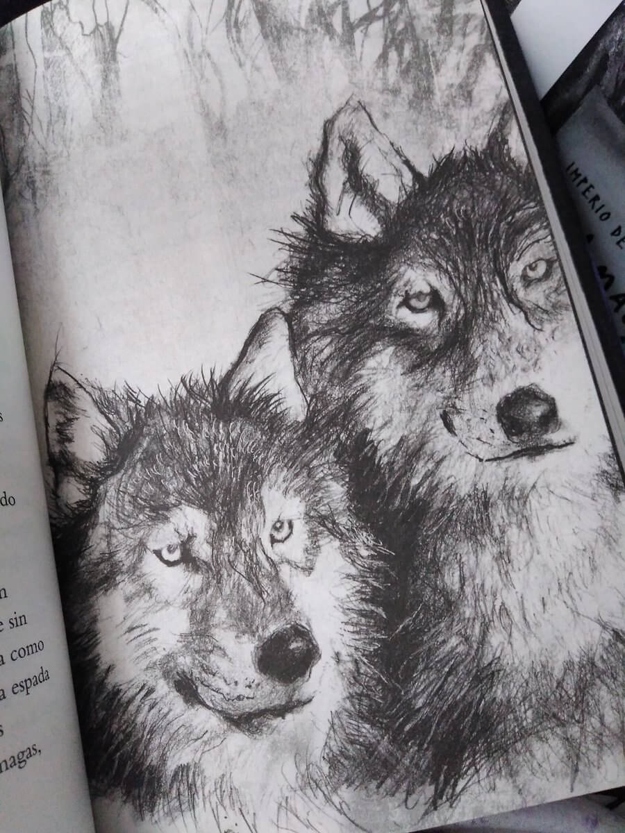 El último libro que has comprado El-tiempo-de-los-magos-ilustraciones2