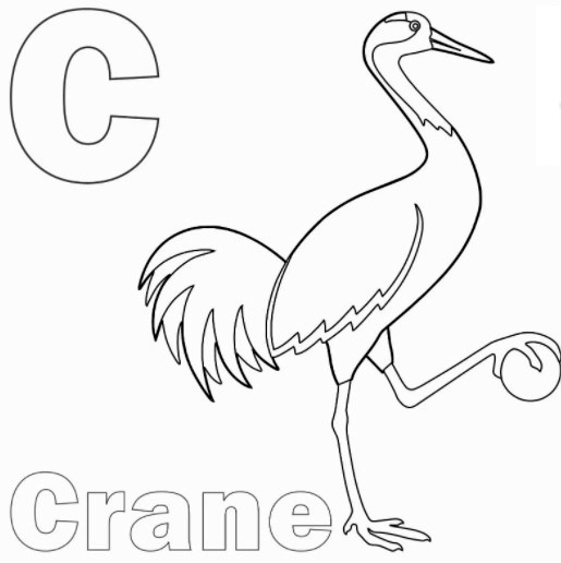 Letter C for Crane Coloring Pages PDF
