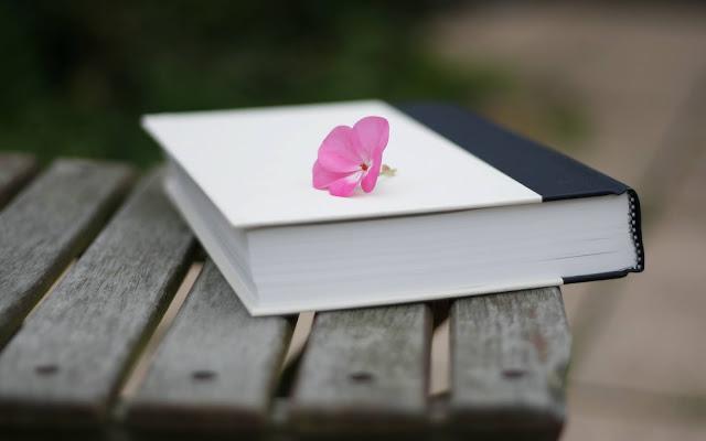 كتاب تحميل روايات كتب رواية pdf حكم الأدب العالمي