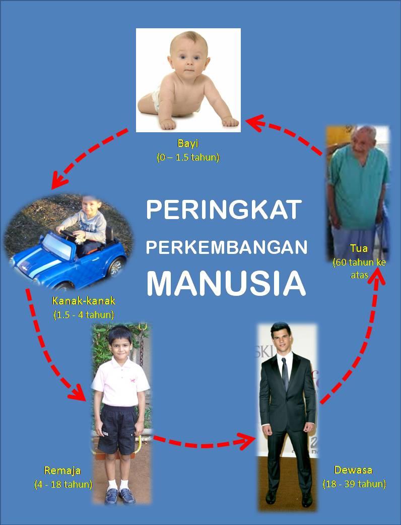 Pedoman Tahap Tumbuh Kembang Bayi 0-12 Bulan