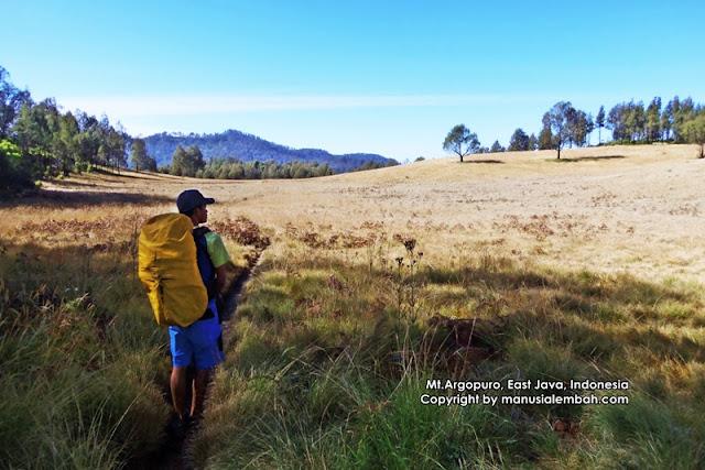 Tips Pendakian Gunung Argopuro