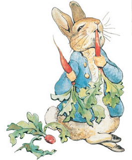 Beatrix Potter's Peter Rabbit - probably not a fussy eater