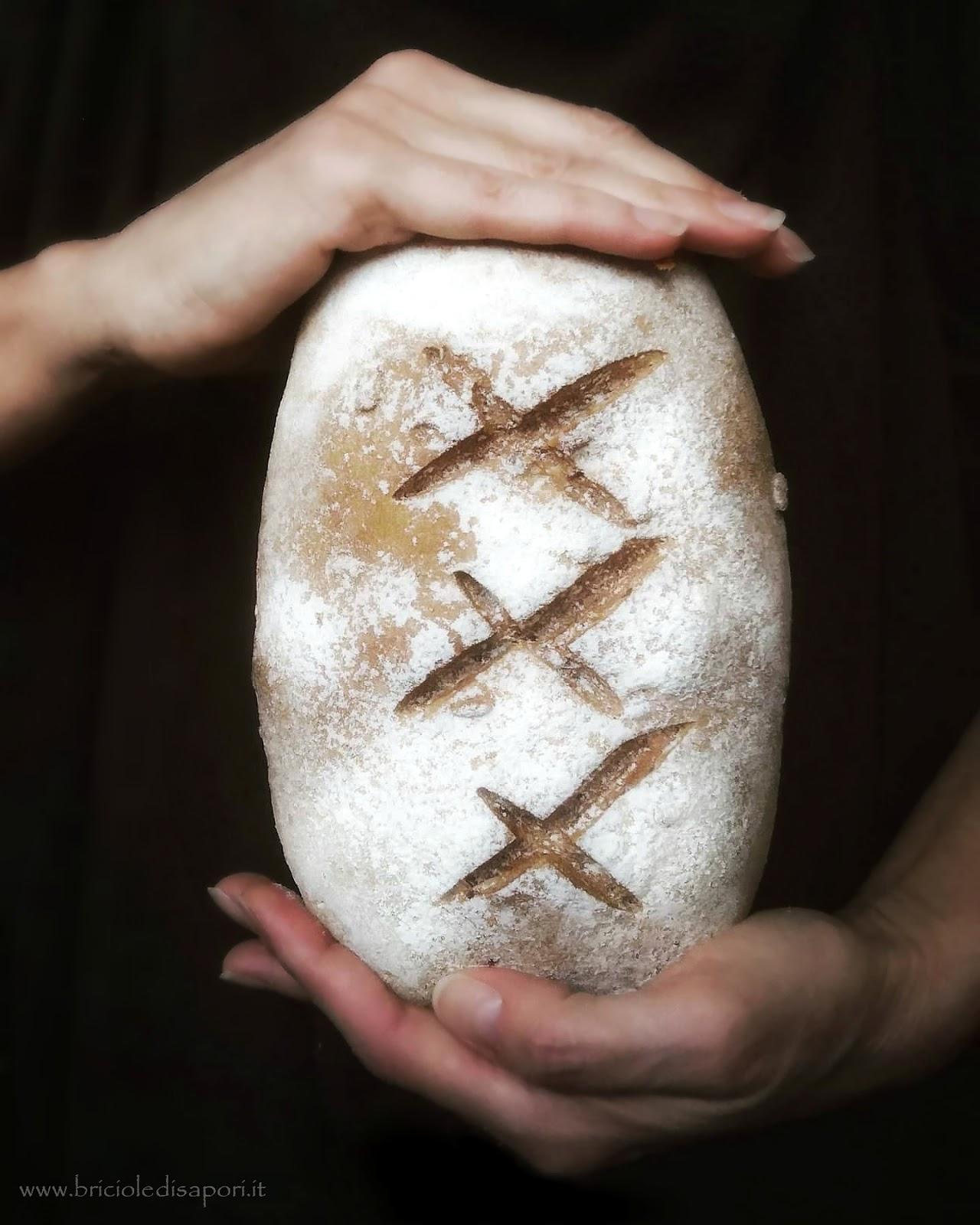 pane rustico con farina di nocciole