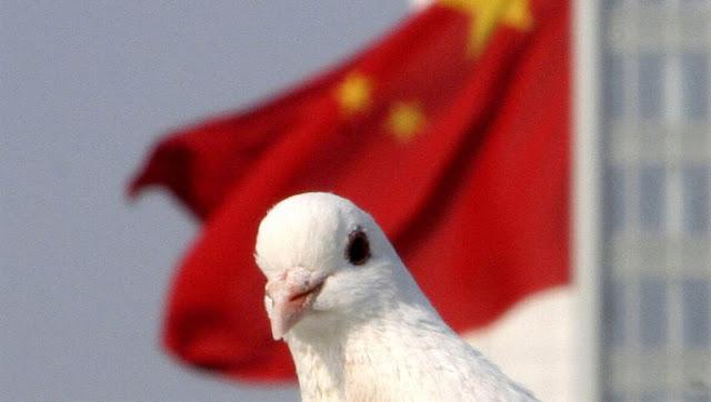 الحمامة الرسول: سلاح الصين الأكثر سرية